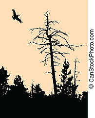 vector silhouette old dry tree on brown background