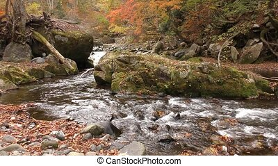 Bent shallow brook - Rock side through of bent shallow brook...