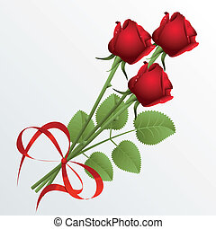 Roses - Three red roses on a white background
