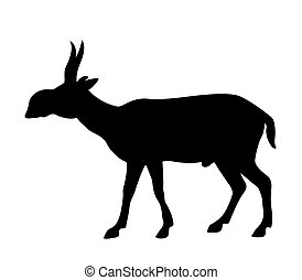 vector silhouette saiga on white background