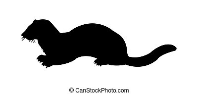vector silhouette of the marten on white background