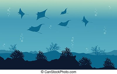 On ocean stingray beauty landscape vector illustration