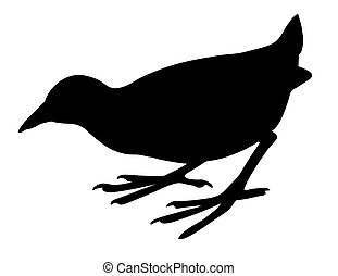 vector silhouette nestling on white background