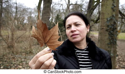Woman Admiring Dry Maple Leaf - Close up shot of a middle...