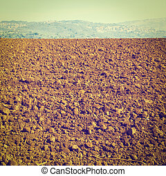 Plowed Fields of Tuscany in the Autumn, Instagram Effect