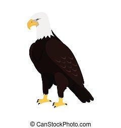 Bald Eagle Flat Design Vector Illustration - Bald eagle...
