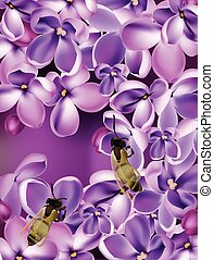 Lilac flowers Realistic Vector illustration with bees collecting honey. Beautiful Spring floral Background