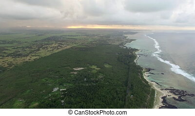 Aerial bird eye view of coast with sand beach and palm trees...