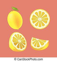 Lemon Yellow Fruit Isolated Set Vector