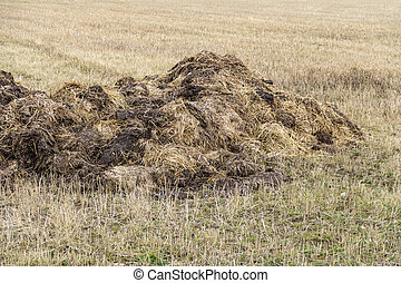 field with manure heap - a rotting manure heap on a stubble...