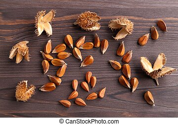 Beech nuts. - Beech nuts on a dark wooden background.