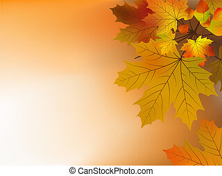 Autumn leaves, soft shallow focus. EPS 8 vector file...