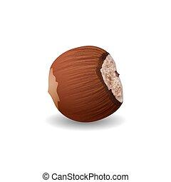 Hazelnut Isolated on a White Background - Hazelnut, Ripe Nut...