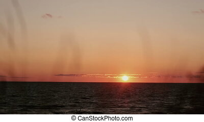A time lapse video of pinky-orange sunset at sea side with dry grass swaying in the front view.