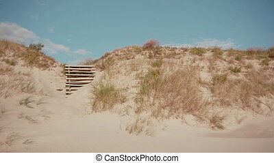 A view of white sand dunes scarcely covered with dry grass...