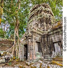 Ta Prohm Temple at Angkor in Cambodia - Ta Prohm Temple at...