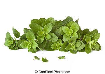 Oregano - Fresh-picked oregano, straight from the herb...