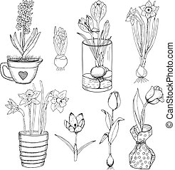 Hand Drawn Spring Flowers Set - Hand drawn spring flowers...