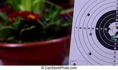 Used target on the table - Bullets Hitting Paper Target 1