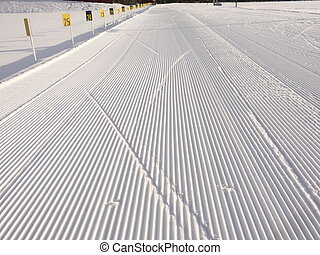 Biathlon arena - Ski tracks at at biathlon arena