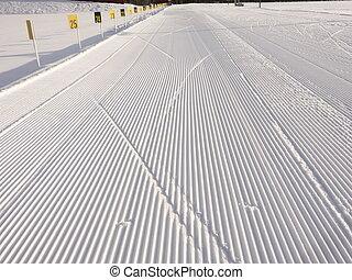 Biathlon arena - Ski tracks at at biathlon arena