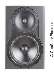 Professional Two way speaker