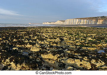 Sussex coast - Chalk cliffs of the East Sussex coastline...