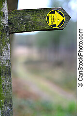 Footpath - Upright wooden footpath sign in winter woodland