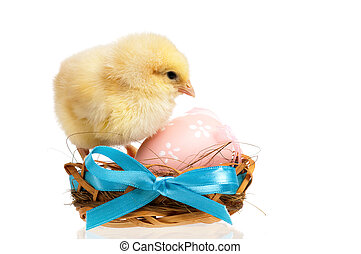 Chicken in nest with Easter eggs