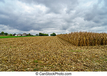 Amish country, PA - Amish country farm barn field...