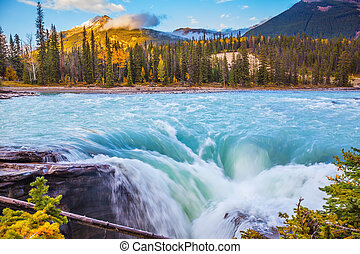Powerful and scenic Athabasca Falls - Canada, Jasper...