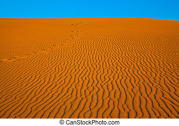 The small waves of orange sand. Early morning in a...