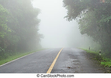 Foggy road in the morning at National Park