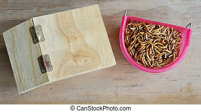 dry worm for feeding pet and little wooden house
