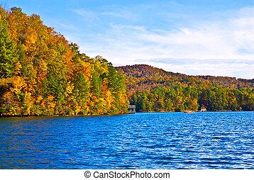 autunno, legno, lago, barca