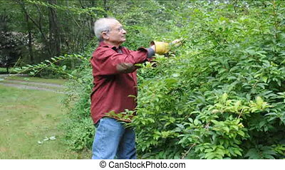 senior using shears garden