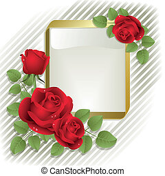 Roses with frame - Red roses with gold frame on a white...