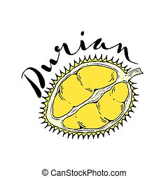 The fruit of durian on a white background with the words...
