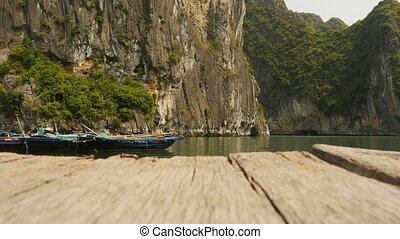 Mountain Ha Long bay wood. Vietnam. (Shot in 4K - 3840x2160,...