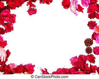 pink flowers border frame with white background