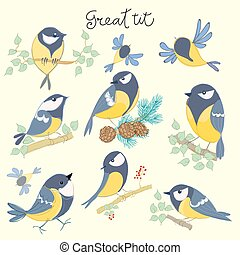 Cartoon birds. Great tit set. Vector illustration