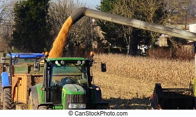 Combine harvester on a wheat field, France