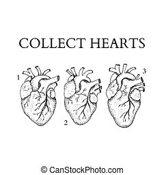 Dotwork Collect Human Hearts. Vector Illustration of Boho...