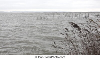 Bad weather over Albufera wetland, Valencia. - Static camera...