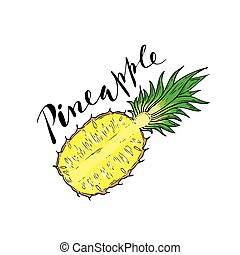 The cut fruit of pineapple on a white background with the...