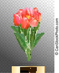 Vector illustration of realistic red tulips bouquet. A bouquet of flowers, lit by the sun.
