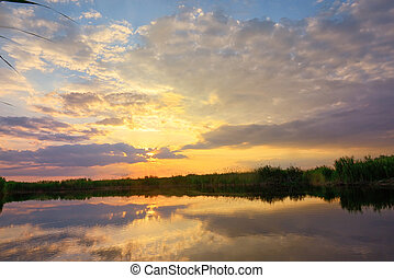 Sunset over danube delta in summer time