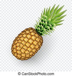 Pinaapple realistic image with transparent shadow vector illustration isolated on plaid white background