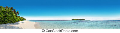 Panorama of tropical island with coconut palm trees, sandy...