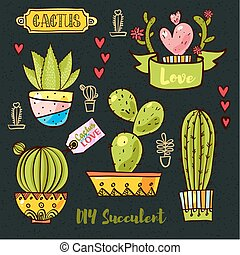 Cacti and succulents in pots. Tags and labels. In the hand...